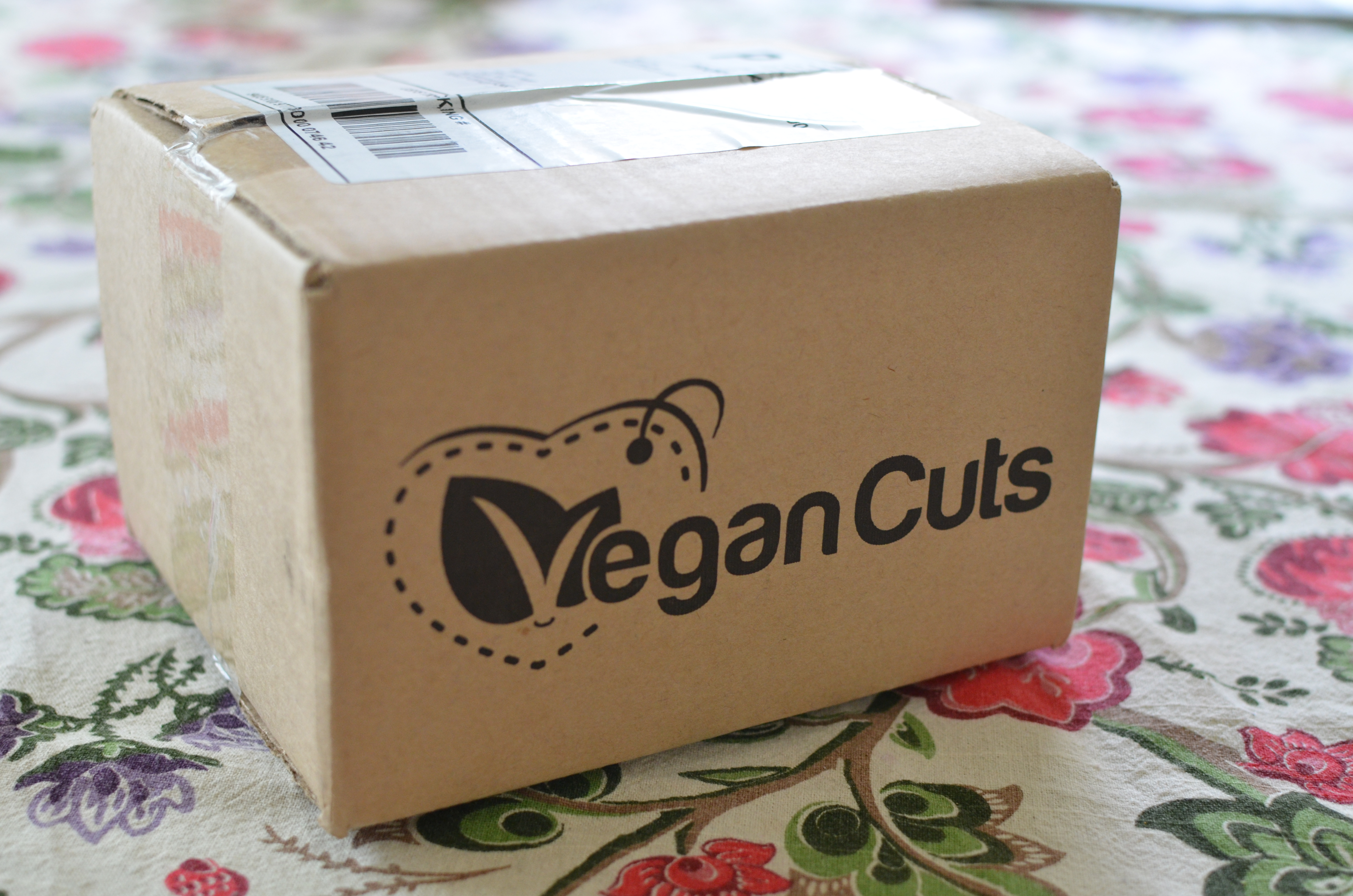 March Vegan Cuts Snack Box Review
